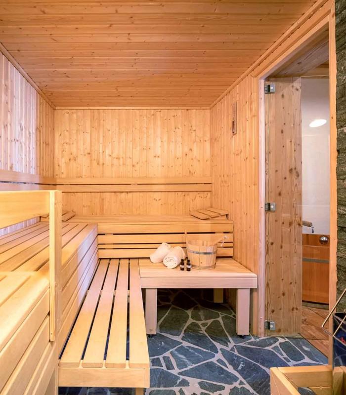 Mountain chalet sauna 1